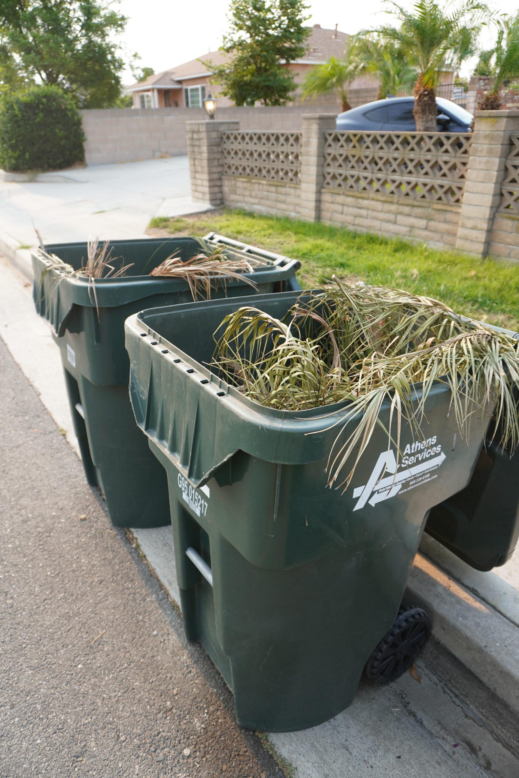 green waste thumbnail