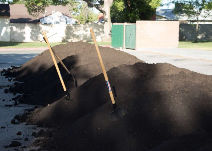 The Power of Composting: A Valuable Solution to an Earth-sized Problem